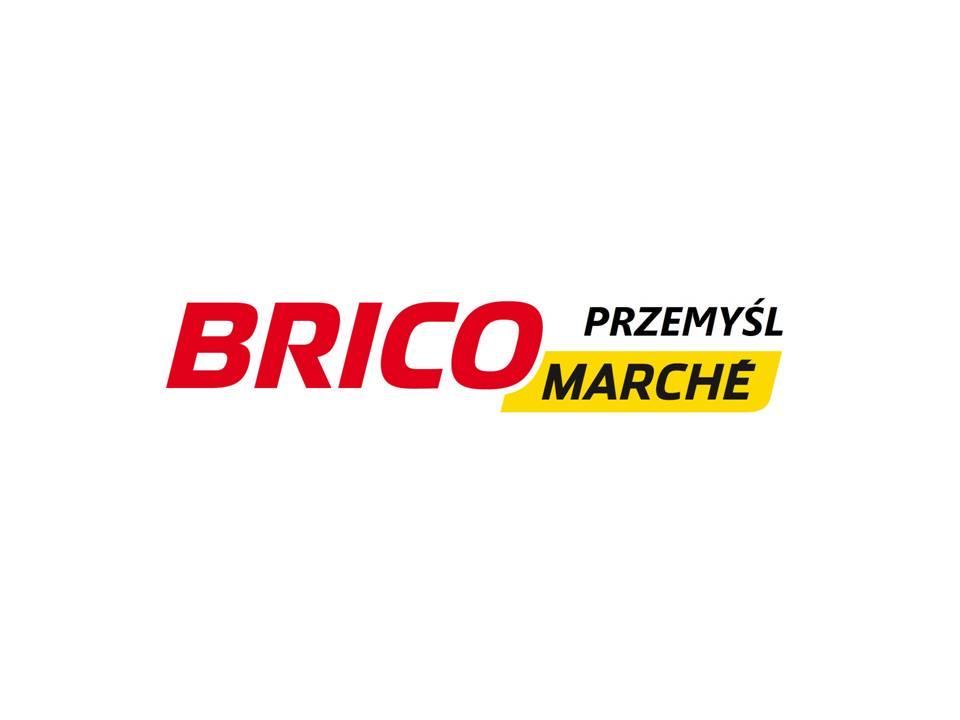 Brico1