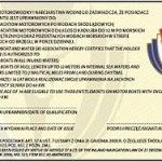 300px-Wz_patent_sm_2013_r